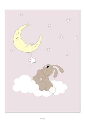 Kanin på sky