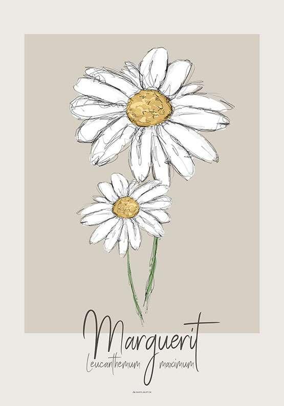 Kunstplakat - Marguerite