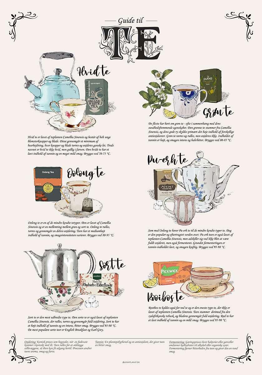 Te plakat - Guide til te